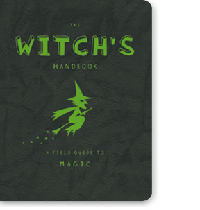 The Witch Hunter's Handbook